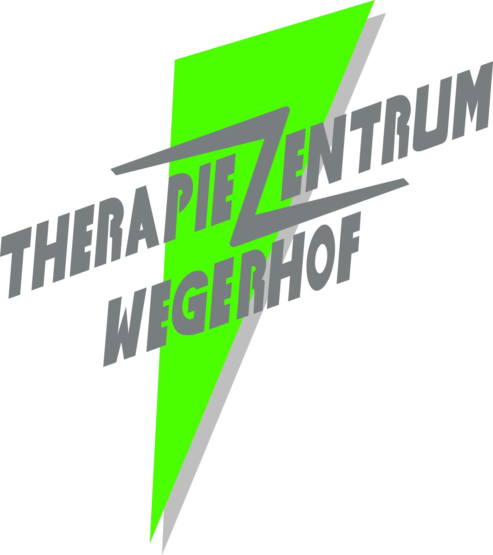Logo_Metner
